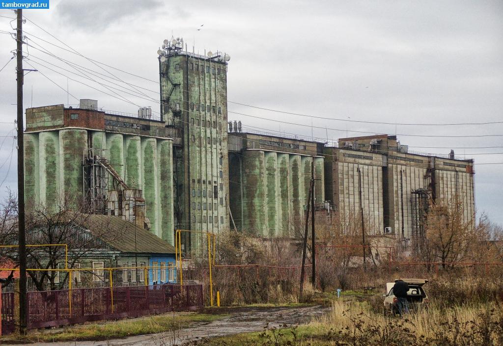 Элеватор тамбовской области мордово скребковые конвейера обслуживание